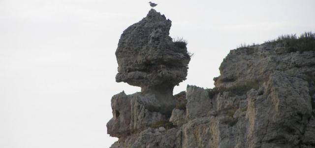 Бутылочка или Монастырь - удаление 36км